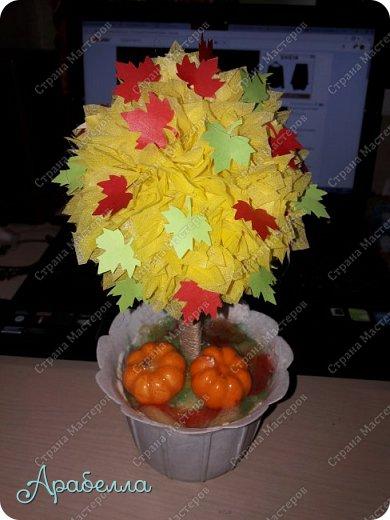 """Топиарий """"Осеннее деревце"""" фото 1"""