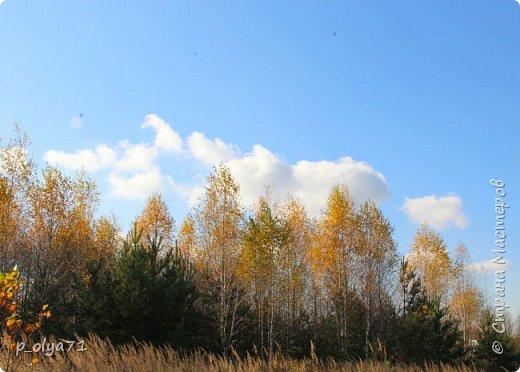 Здравствуйте!!!  Сегодня у нас идёт снежок,а я вот хочу показать фото золотой осени! 17.10.17 фото 37