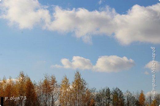 Здравствуйте!!!  Сегодня у нас идёт снежок,а я вот хочу показать фото золотой осени! 17.10.17 фото 48