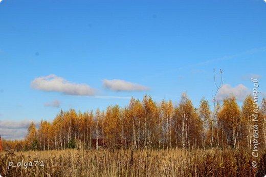 Здравствуйте!!!  Сегодня у нас идёт снежок,а я вот хочу показать фото золотой осени! 17.10.17 фото 47