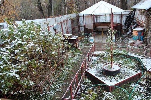 Здравствуйте!!!  Сегодня у нас идёт снежок,а я вот хочу показать фото золотой осени! 17.10.17 фото 51
