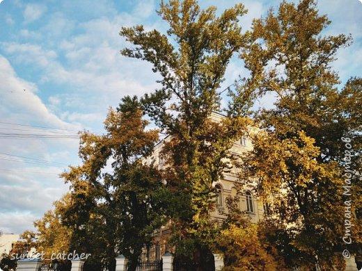 В этом году удалось встретить осень сразу в шести городах.  фото 8