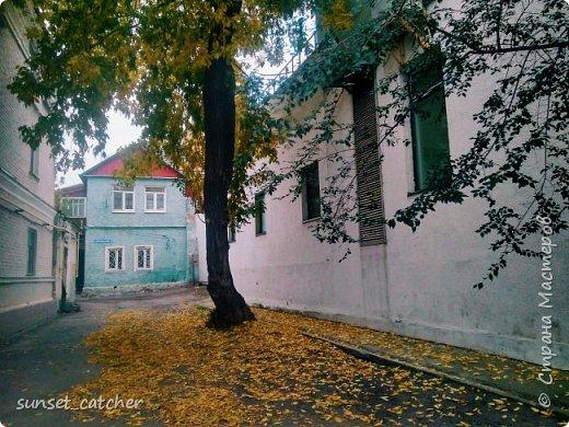 В этом году удалось встретить осень сразу в шести городах.  фото 24