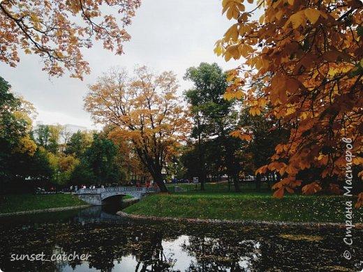 В этом году удалось встретить осень сразу в шести городах.  фото 19