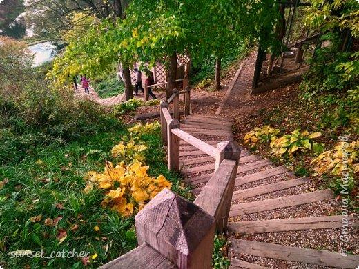 В этом году удалось встретить осень сразу в шести городах.  фото 12