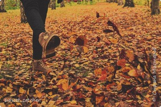 В этом году удалось встретить осень сразу в шести городах.  фото 25