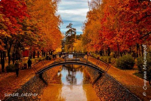 В этом году удалось встретить осень сразу в шести городах.  фото 28