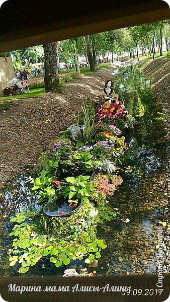 В этом году мы опять были на выставке город-сад. Основная цель нынешнего праздника, приуроченного к Году экологии, – демонстрация лучших достижений садово-паркового искусства, ландшафтного дизайна и повышение уровня экологической культуры. фото 8