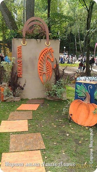 В этом году мы опять были на выставке город-сад. Основная цель нынешнего праздника, приуроченного к Году экологии, – демонстрация лучших достижений садово-паркового искусства, ландшафтного дизайна и повышение уровня экологической культуры. фото 11