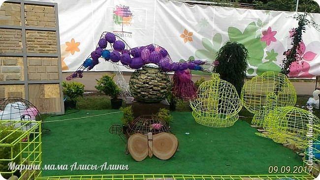 В этом году мы опять были на выставке город-сад. Основная цель нынешнего праздника, приуроченного к Году экологии, – демонстрация лучших достижений садово-паркового искусства, ландшафтного дизайна и повышение уровня экологической культуры. фото 15