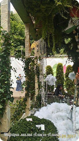 В этом году мы опять были на выставке город-сад. Основная цель нынешнего праздника, приуроченного к Году экологии, – демонстрация лучших достижений садово-паркового искусства, ландшафтного дизайна и повышение уровня экологической культуры. фото 17