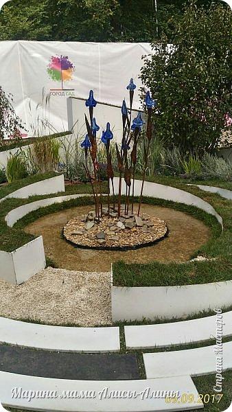 В этом году мы опять были на выставке город-сад. Основная цель нынешнего праздника, приуроченного к Году экологии, – демонстрация лучших достижений садово-паркового искусства, ландшафтного дизайна и повышение уровня экологической культуры. фото 20