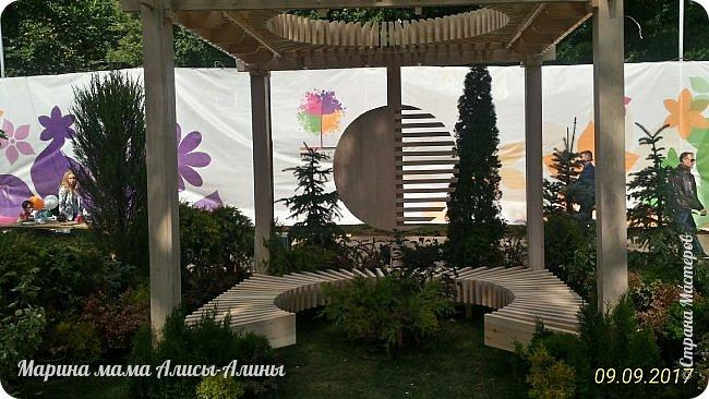 В этом году мы опять были на выставке город-сад. Основная цель нынешнего праздника, приуроченного к Году экологии, – демонстрация лучших достижений садово-паркового искусства, ландшафтного дизайна и повышение уровня экологической культуры. фото 26