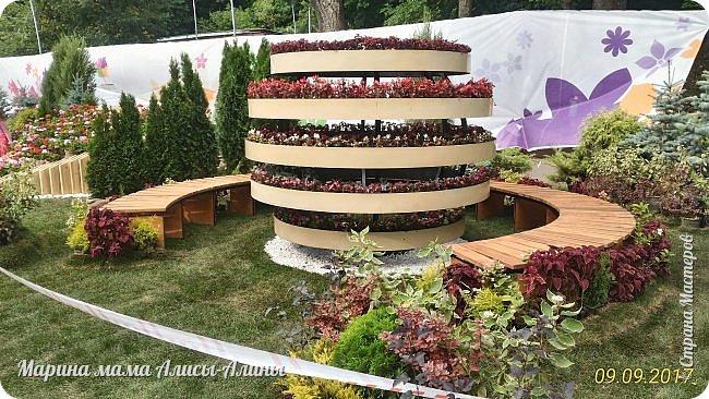 В этом году мы опять были на выставке город-сад. Основная цель нынешнего праздника, приуроченного к Году экологии, – демонстрация лучших достижений садово-паркового искусства, ландшафтного дизайна и повышение уровня экологической культуры. фото 31