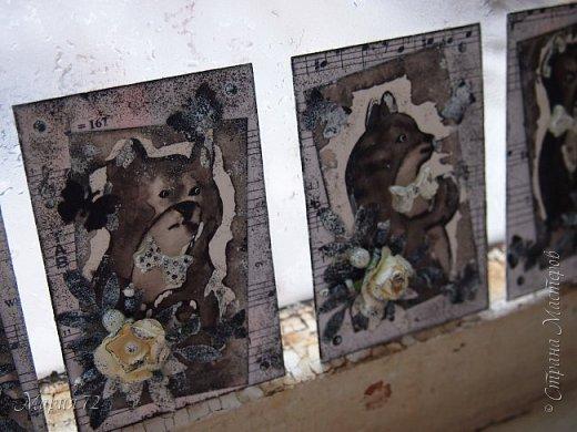 Эта монохромная серия котиков была сделана еще в марте этого года, но отфотографировать и скинуть все в блог получилось только сейчас, когда ноябрь наступает на пятки октябрю. №1/4-зянята. №2/4-_____ №3/4-_____ №4/4-Мотюша  фото 2