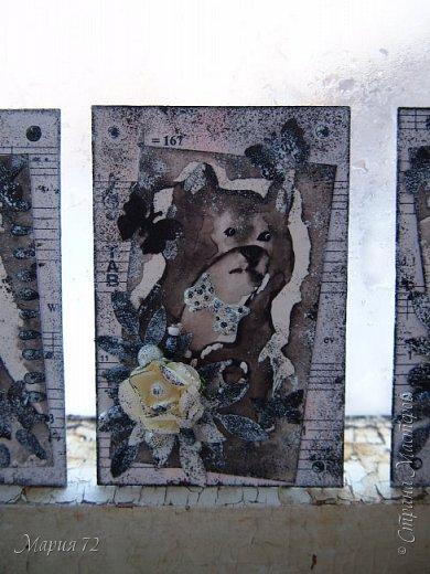 Эта монохромная серия котиков была сделана еще в марте этого года, но отфотографировать и скинуть все в блог получилось только сейчас, когда ноябрь наступает на пятки октябрю. №1/4-зянята. №2/4-_____ №3/4-_____ №4/4-Мотюша  фото 4