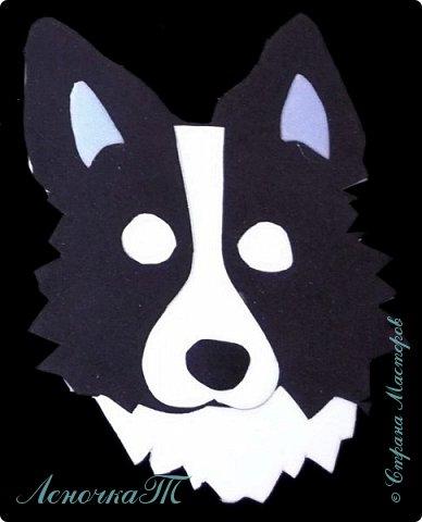 Доброе время суток  друзья! Только вчера  я познакомила вас с Тобиком, а сегодня  хочу предложить вам мастер-класс, ещё одиного мини-чехольчика для флешки, в виде собаки Хаски. фото 13