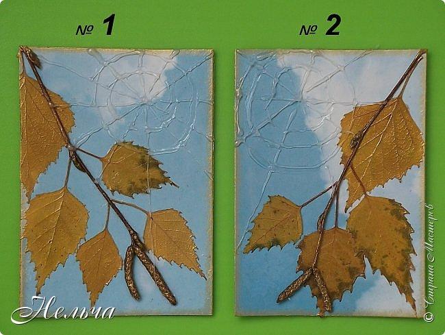 """Серия называется """"Бабье лето"""". Стояли тёплые, солнечные дни и мне захотелось продлить эту чудесную пору. И вот что у меня получилось...  Полетели паутинки,  Осень ставит лету сети.  На траве слезой росинки  Легкой памятью о лете.  ................................... Шелестит листвой дубрава,  Приготовившись раздеться,  Озорных лучей оправа  Не дает тепла для сердца.   Вяжет осень паутинки  Чтоб немножечко согреться,  И ажурные картинки  На травинках, словно дверцы.  (Марина Борина-Малхасян) фото 9"""