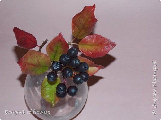 Черноплодная рябина из холодного фарфора фото 2