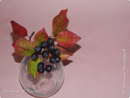 Черноплодная рябина из холодного фарфора фото 3