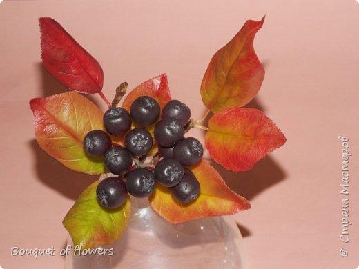 Черноплодная рябина из холодного фарфора фото 4