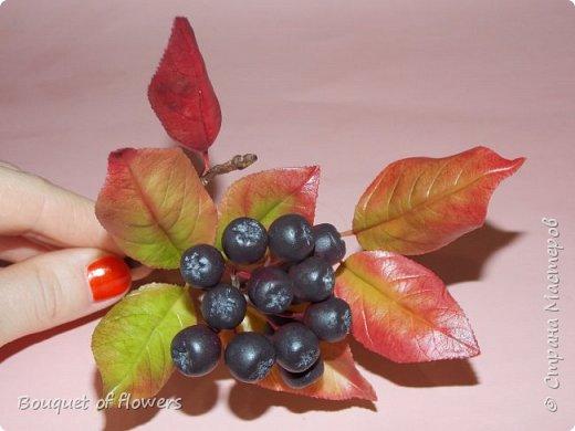 Черноплодная рябина из холодного фарфора фото 1