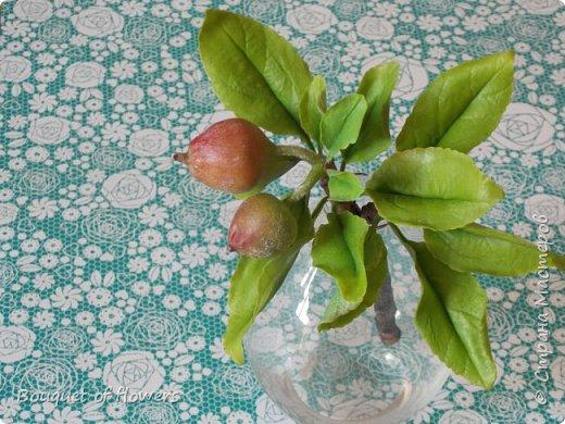 Веточка яблони из холодного фарфора фото 1