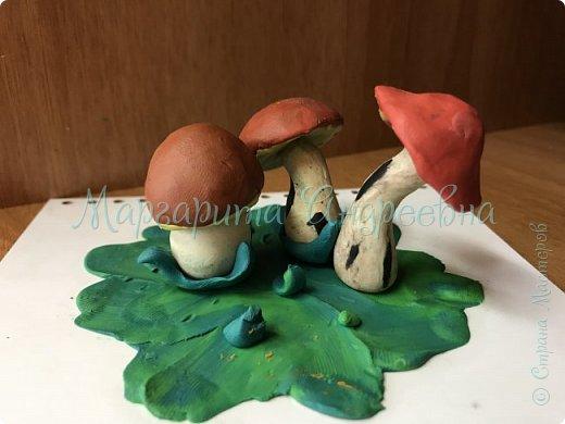 1) Совместная работа (мама+сынуля) в садик. Композиция «Под грибом» фото 6