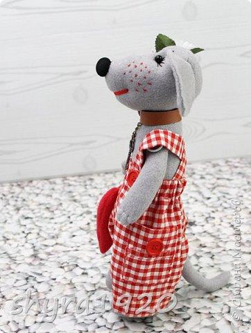 У меня живет собака, Милый маленький щенок. Улыбака и кусака, И пушистенький комок. Много с ним вопросов разных: И прогулки, и еда – Но зато чудесный праздник Он приносит нам всегда! Я люблю его, ребята, И хочу вам дать совет: Если в доме есть собака, Вы – счастливый человек!  Автор: Полина Николаева  фото 2