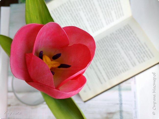 """"""" В моих снах цветы тают и распускается снег"""" ...  Мы все привыкли видеть тюльпаны весной, когда еще не сошел последний снег. Они как вестники весны очаровывают нас своей изящностью..   И сейчас, когда на улице холодная и слякотная осень, как никогда хочется весны, тепла и нежности) Так  почему бы  не подарить ее себе! фото 11"""