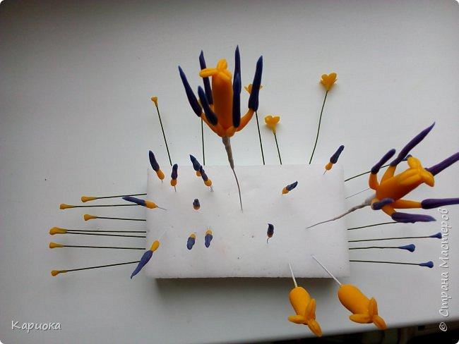 """"""" В моих снах цветы тают и распускается снег"""" ...  Мы все привыкли видеть тюльпаны весной, когда еще не сошел последний снег. Они как вестники весны очаровывают нас своей изящностью..   И сейчас, когда на улице холодная и слякотная осень, как никогда хочется весны, тепла и нежности) Так  почему бы  не подарить ее себе! фото 12"""