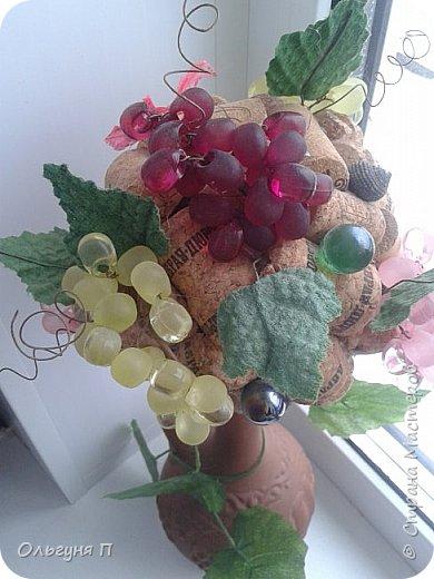 Виноградные фантазии фото 2