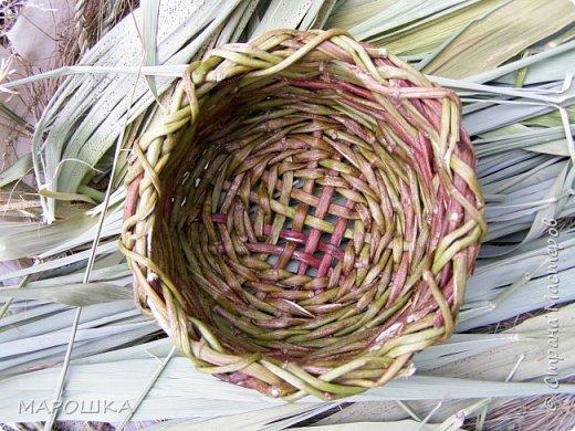 плетенка из стебельков хмеля зрела давно, но попробовать сплести из этих самых стебельков заставили сами стебельки, образовавшие заросли на заборе фото 8
