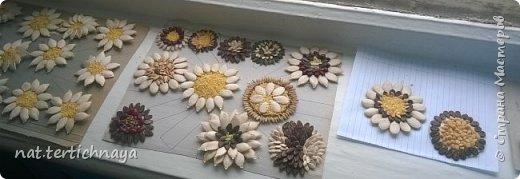 Цветы в букетике из семян тыквы, арбуза, серединки  засыпаны крупой. Работа коллективная- выполнили учащиеся 6 класса, к празднику  8 Марта. фото 4