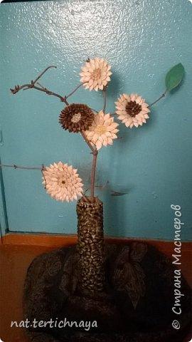 Цветы в букетике из семян тыквы, арбуза, серединки  засыпаны крупой. Работа коллективная- выполнили учащиеся 6 класса, к празднику  8 Марта. фото 1