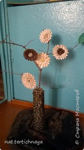 Цветы в букетике из семян тыквы, арбуза, серединки  засыпаны крупой. Работа коллективная- выполнили учащиеся 6 класса, к празднику  8 Марта. фото 2