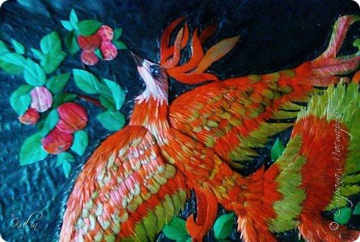 Огненная птица фото 2