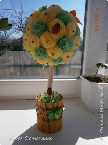 Крона дерева сделана из двух цветов салфеток,ствол обмотан нитью. фото 1