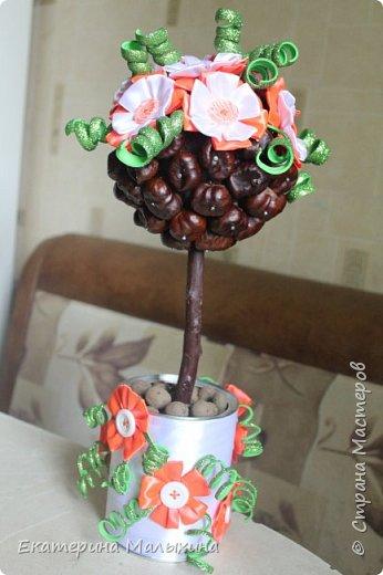 Это деревце, я сделала для своей подруги. На шар, приклеила каштаны, украсила цветами из атласных лент.