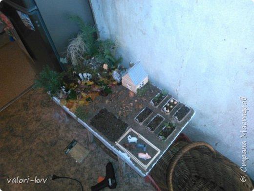 Ферма и огород для сада фото 4