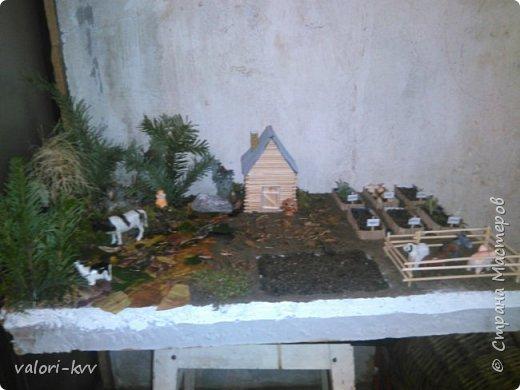 Ферма и огород для сада фото 3