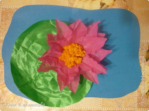 Астраханский лотос и лист выполнены из желатиновой ткани, серединка из ниток, основание картон.