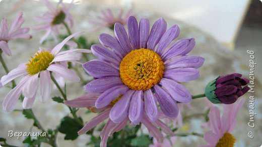 Хризантема немахровая. Давно заглядывалась на свою нежную хризантемку в саду. И вот , наконец-то, решилась!А что получилось - судить вам, дорогие мастерицы! фото 11