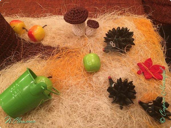 Здравствуйте, дорогие жители и гости СМ! Представляем Вашему вниманию осеннюю полянку, которую мы с дочкой сделали в детский сад фото 5