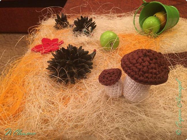 Здравствуйте, дорогие жители и гости СМ! Представляем Вашему вниманию осеннюю полянку, которую мы с дочкой сделали в детский сад фото 2