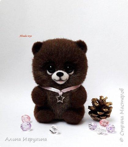 Мишка Шуня фото 2