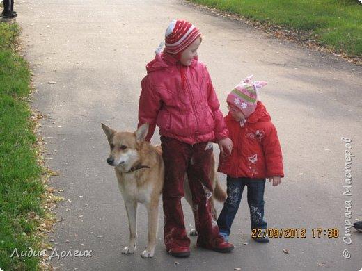 """История эта началась летом 2012 года. Я всегда считала себя """"кошатницей"""", а к собакам относилась весьма прохладно. Ну, мне они нравились, но чисто теоретически. Собаку заводить я совсем не собиралась(хлопотное это дело, а времени и так ни на что не хватает). И тут... Случайно зайдя на сайт приютов для кошек и собак( а их в Москве несколько), стала читать истории из жизни их обитателей. Как правило, грустные и безрадостные с редким счастливым концом( что эту собаку или кошку забрали из приюта и их фото до и после этого радостного события). Так, листая страницу за страницей и , чисто из любопытства, разглядывая фотографии животных, я вдруг увидела ЭТУ СОБАКУ. фото 19"""