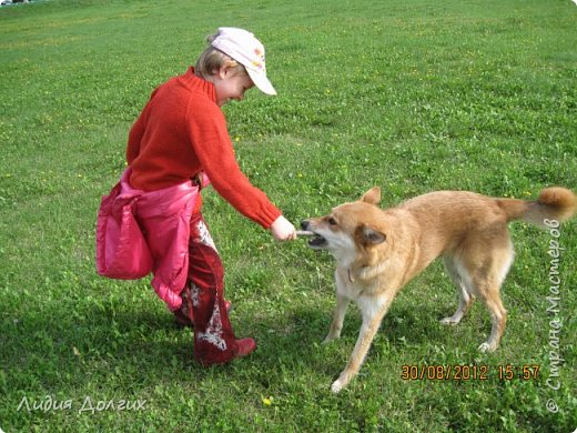 """История эта началась летом 2012 года. Я всегда считала себя """"кошатницей"""", а к собакам относилась весьма прохладно. Ну, мне они нравились, но чисто теоретически. Собаку заводить я совсем не собиралась(хлопотное это дело, а времени и так ни на что не хватает). И тут... Случайно зайдя на сайт приютов для кошек и собак( а их в Москве несколько), стала читать истории из жизни их обитателей. Как правило, грустные и безрадостные с редким счастливым концом( что эту собаку или кошку забрали из приюта и их фото до и после этого радостного события). Так, листая страницу за страницей и , чисто из любопытства, разглядывая фотографии животных, я вдруг увидела ЭТУ СОБАКУ. фото 28"""