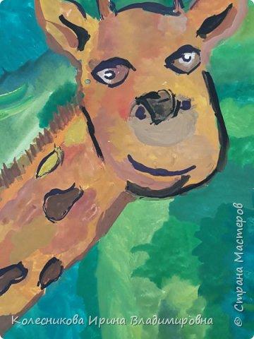 В мире животных. фото 3