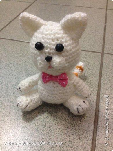 Вот такой милый Мурзик , моя первая вязаная игрушка.... фото 1